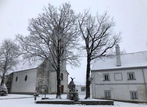 Naturdenkmal Zwei Eichen in Franzen (48.61884, 15.39494)