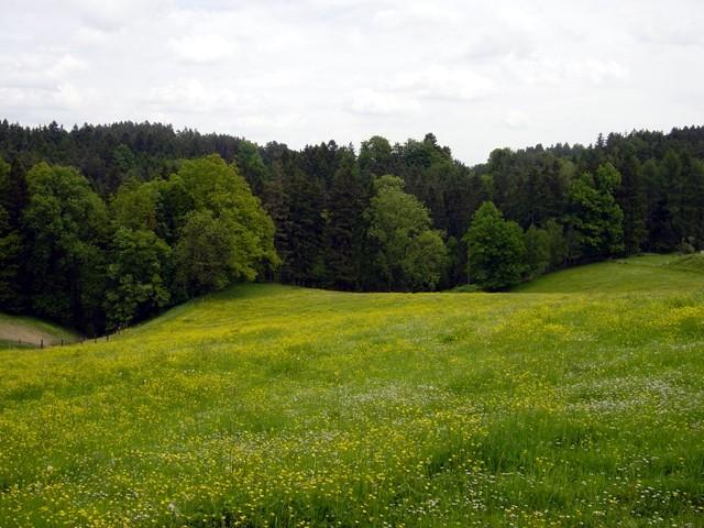 Bei Rosenau Schloss