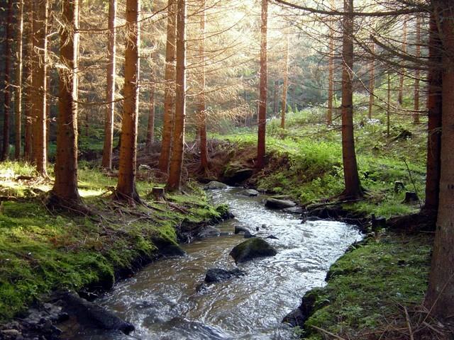 Friedersbachtal