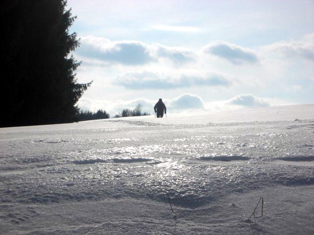 auf Eis und Schnee