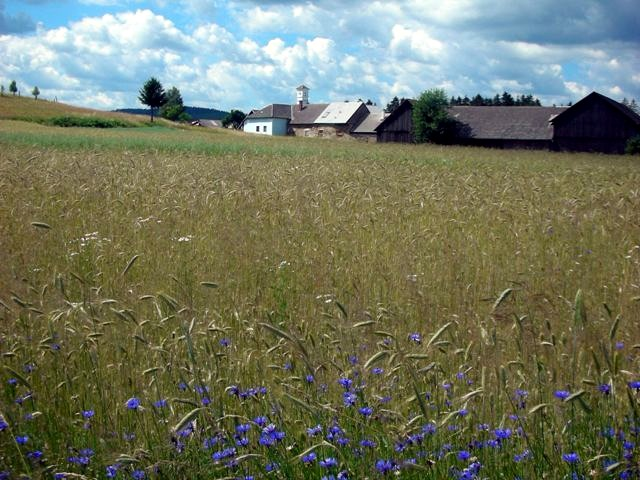 5-Dörfer-Weg 57