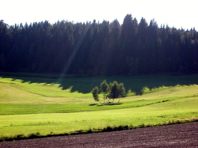 Riebeisbachtal