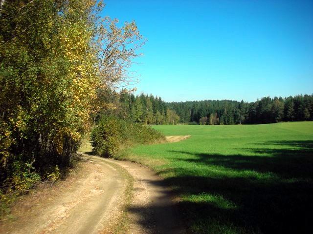 vor Wiesensfeld