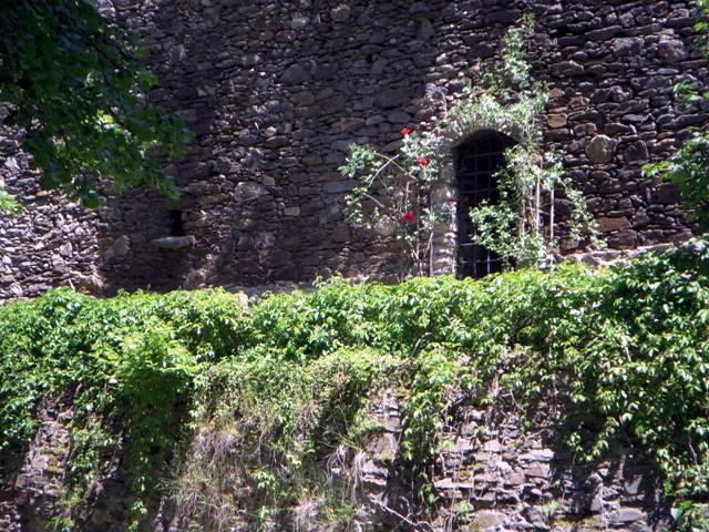 Die Stadtmauer - Detail