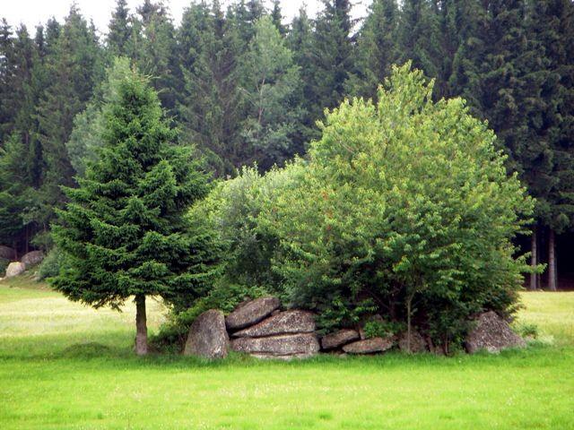 Steingruppe
