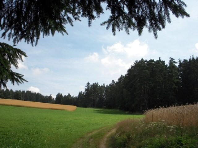 Richtung Demutsgraben