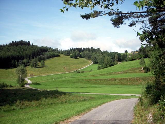 Im Höllbachtal