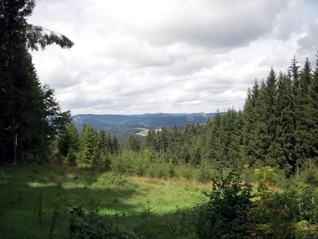 Vor Hengstberg