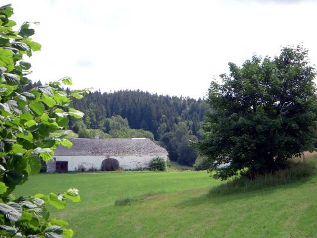 Der Hengstberg