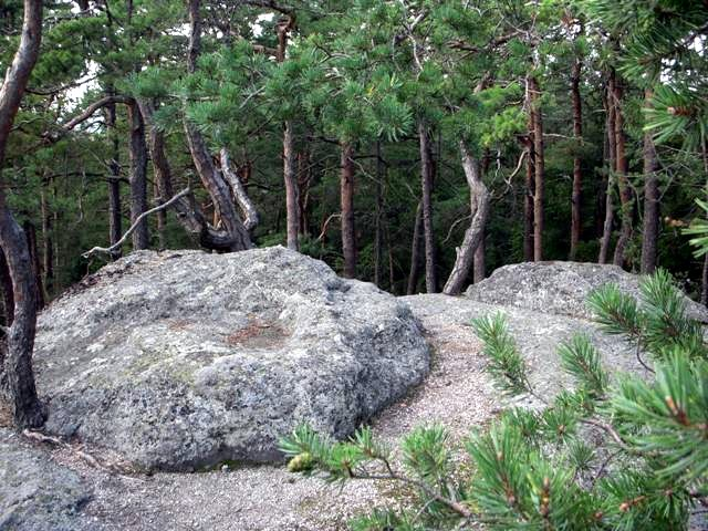 Stierberg