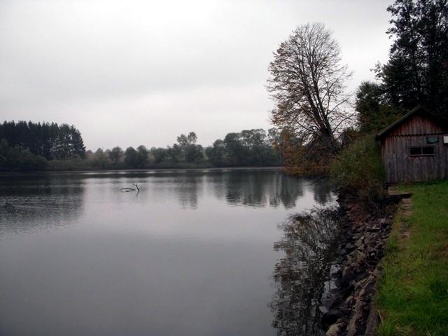 Zieringser Teich