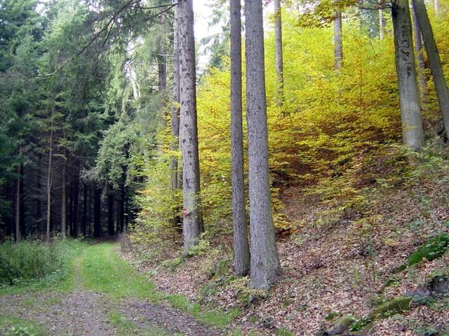 Richtung Gradnitz