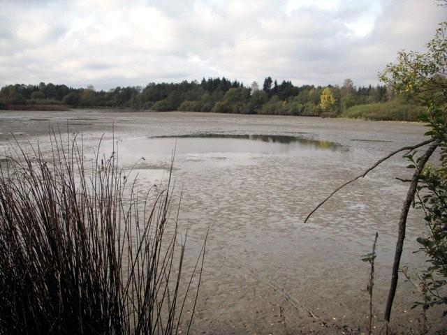 Abgefischter Teich