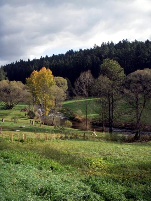 Im Tal der Zwettl