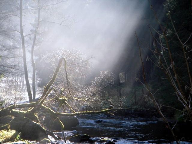 Naturfreundeweg 2 Zwettl-Gschwendtmühle