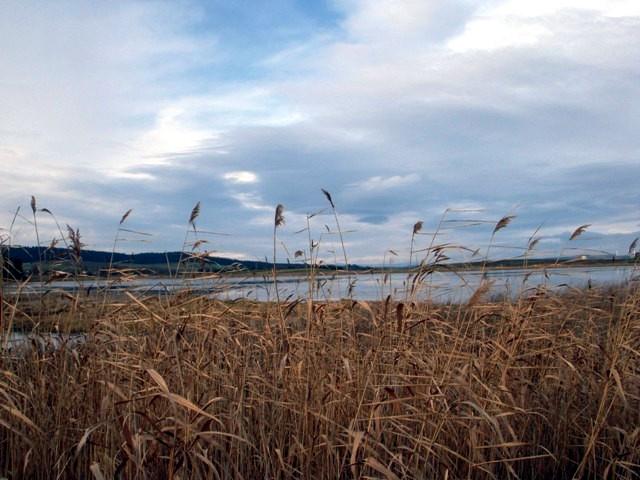Rudmannser Teich