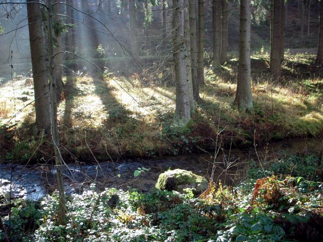 Sierningbach