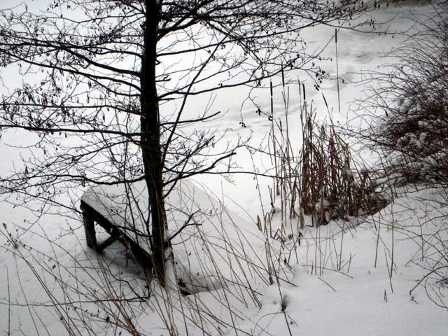 beim Teich