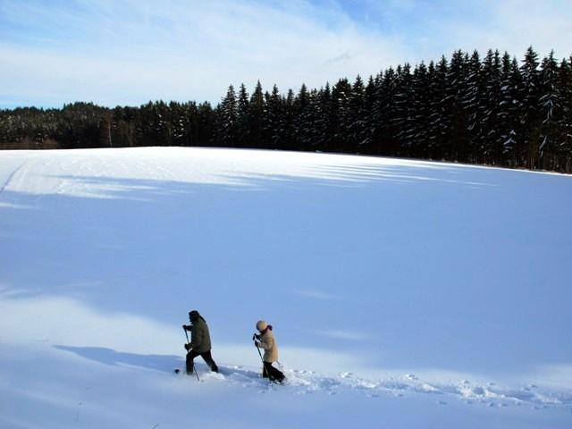 Schneeschuhwandern - Naturerlebnis