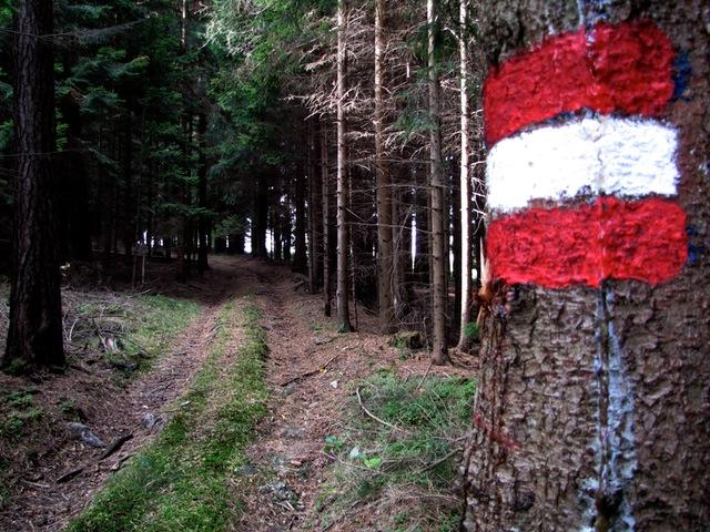 rot-weiß-rote Markierung