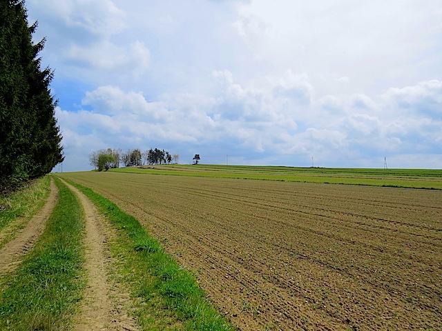 Richtung Obernondorf