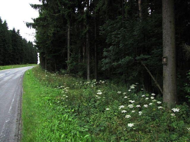 Die Bundesstraße