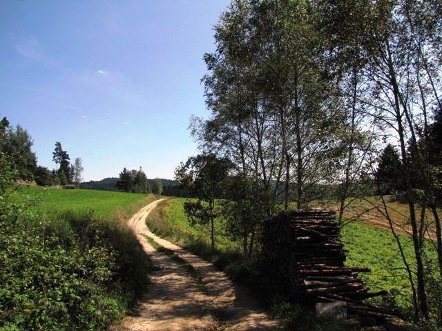 Waldviertler Landschaft