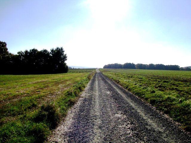 Merkersdorfer Feld