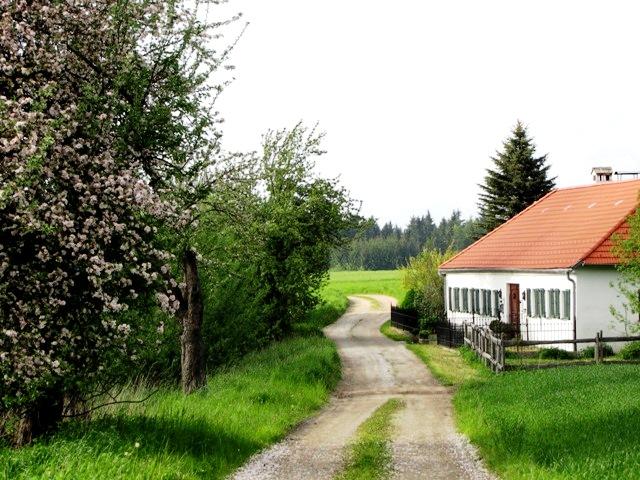 Karnauwinkelweg