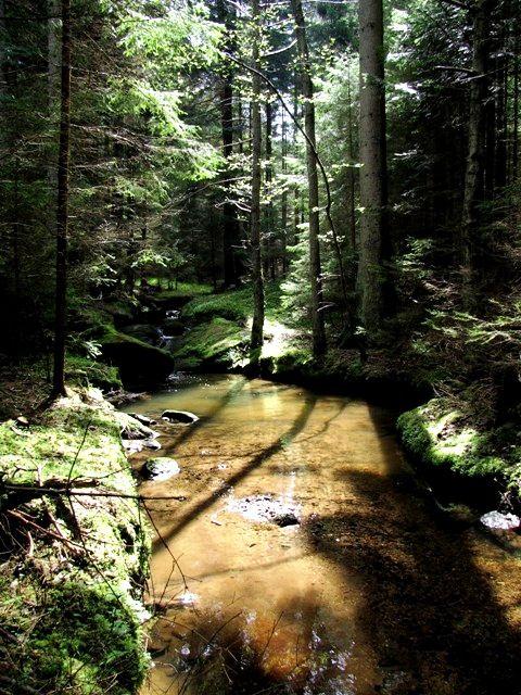 Im Weißenbachtal