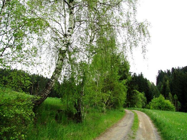 Richtung Frankenreith