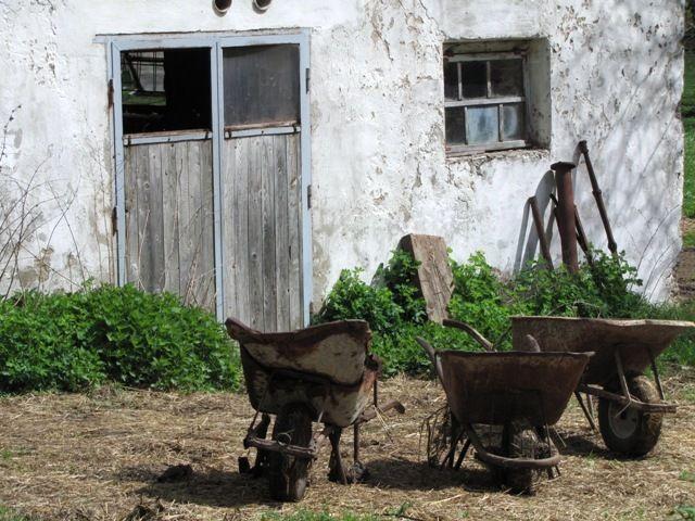Bauernaufstand