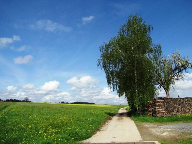 Bei Großweißenbach