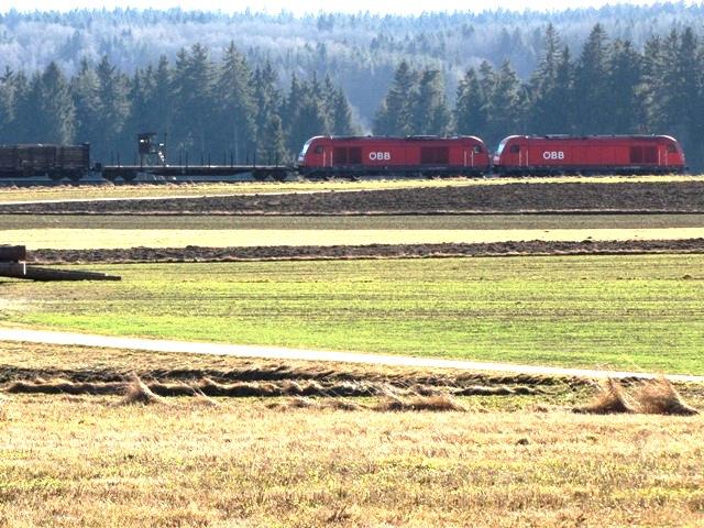 Güterzug bei Hörmanns