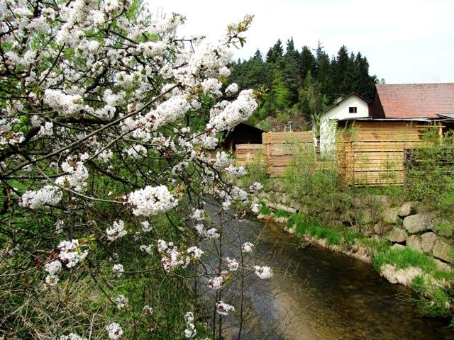 Klingenmühle