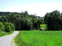 Brücke über den Elexenbach