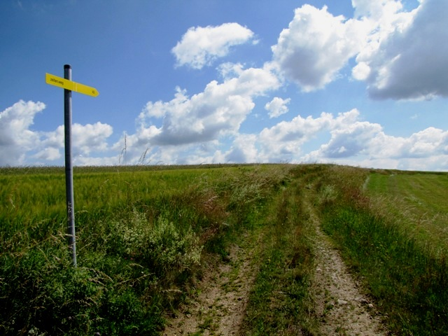Richtung Perndorf