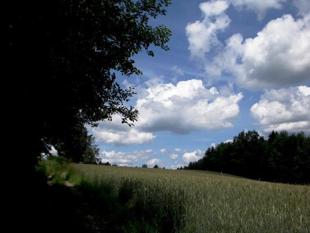 Richtung Kremstal