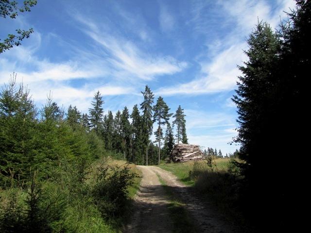 Westlich von Bad Großpertholz