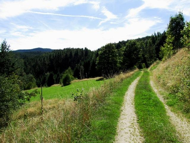 Südlich von Bad Großpertholz