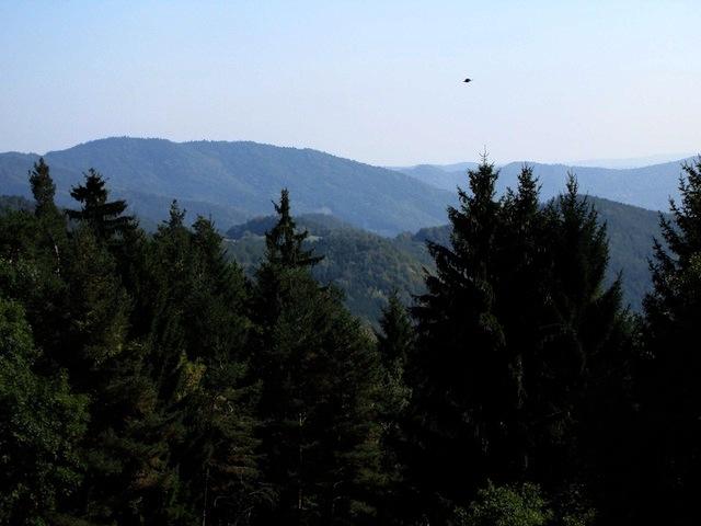 Blick Richtung Donautal