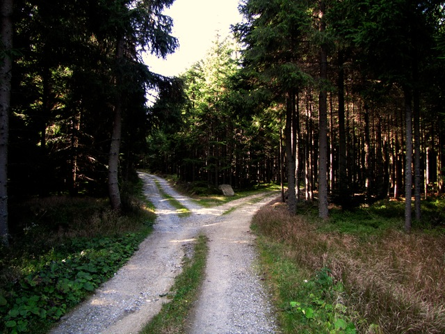 Weggabelung und Rückkehrpunkt