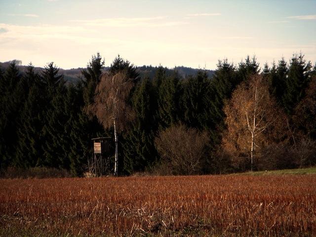 Die Steinäckerfelder