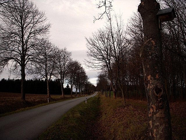 Zufahrtsstraße Schloss Waldreichs
