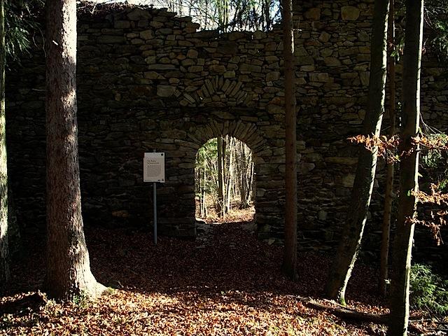 Ruine Schwarzenöd
