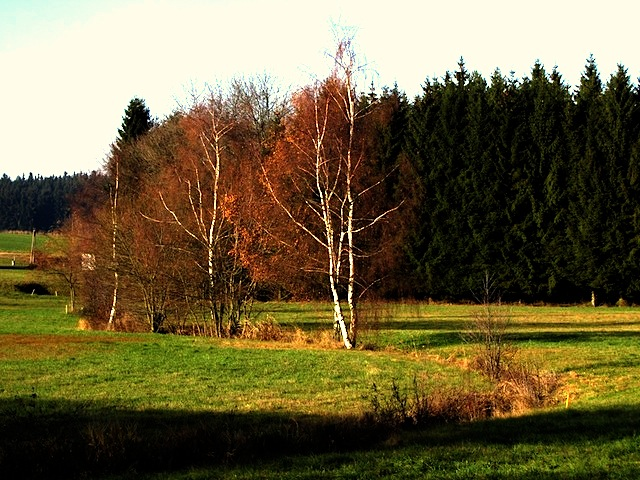 Der Hießbach bei Kleinhaslau
