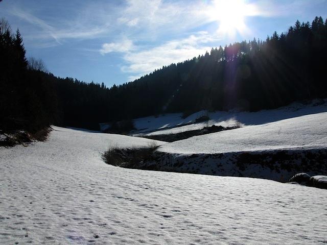 Im Katzenbachtal