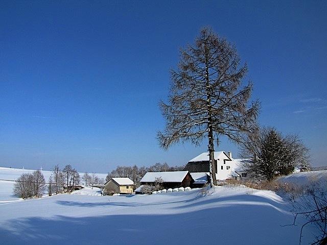 Die Zwickelmühle mit Mühlgraben
