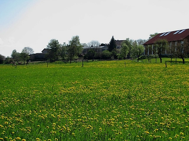 Bei Edelhof