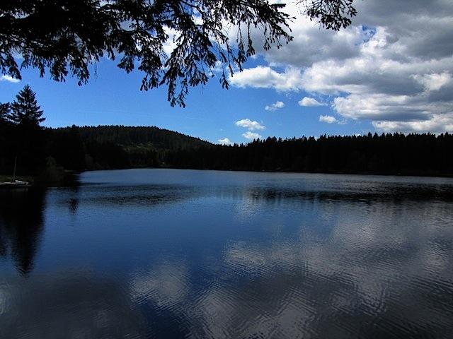 Der Edlesberger Teich
